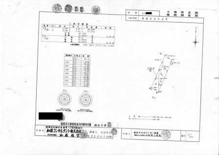 近隣の地籍図 (2)