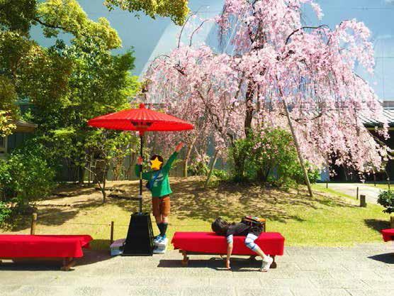 桜の下で記念写真