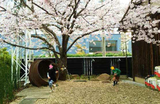 桜の下で遊ぶ