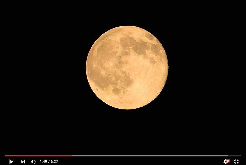 満月花の月