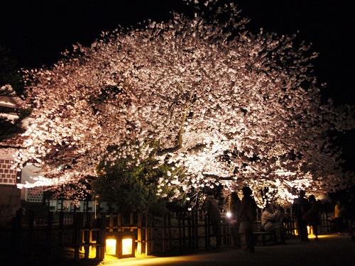金沢城公園160406-1