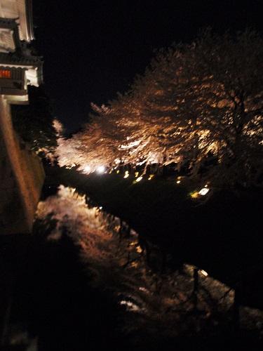金沢城公園160407-3