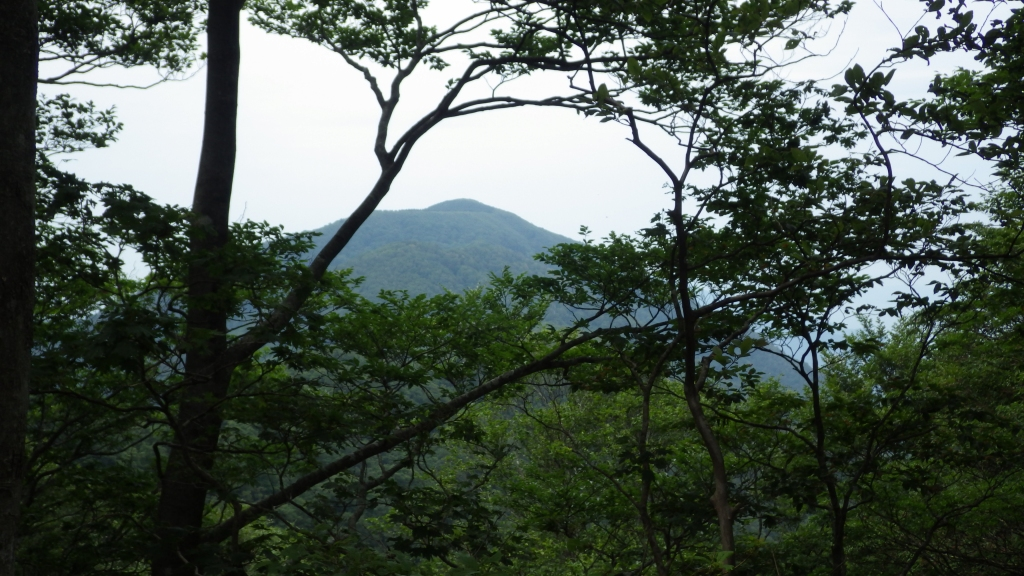 1351野坂岳