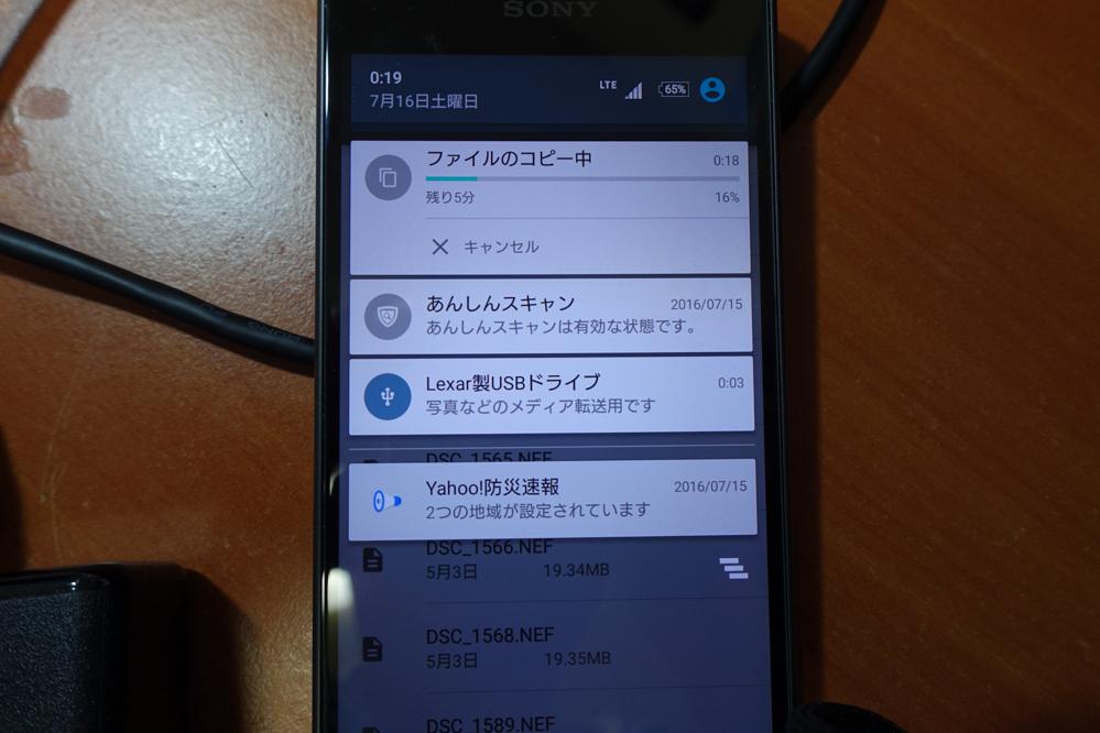 DSC00634.jpg