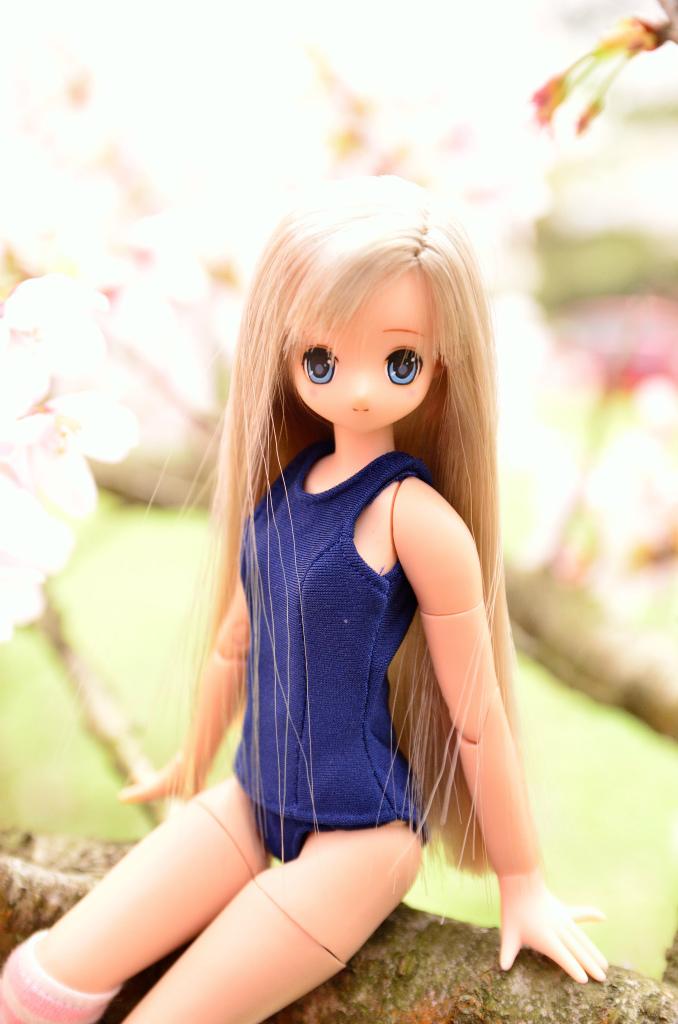 04DSC_0997.jpg