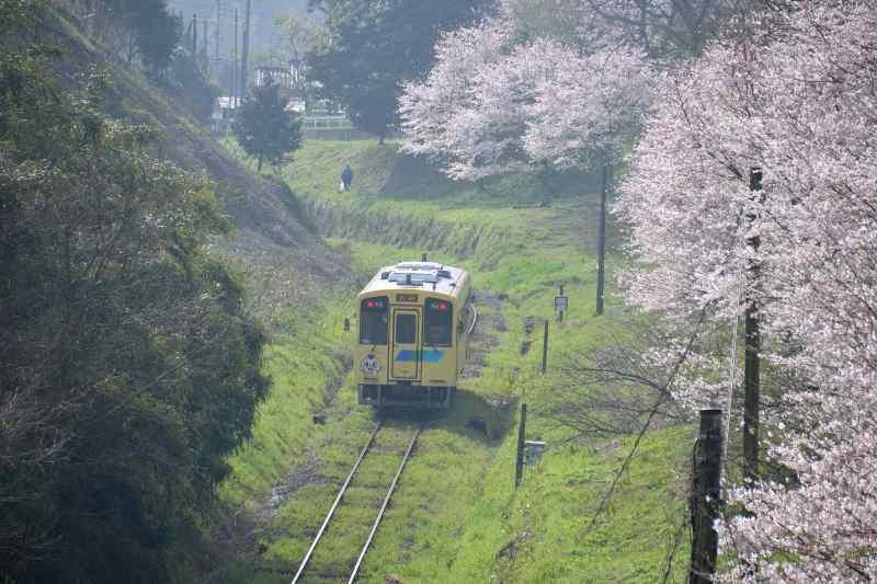 平成筑豊鉄道 (4)