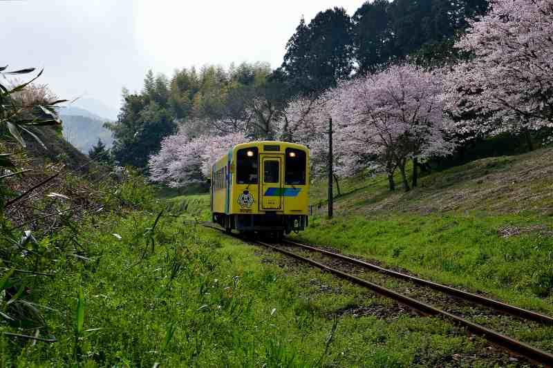 平成筑豊鉄道 (6)