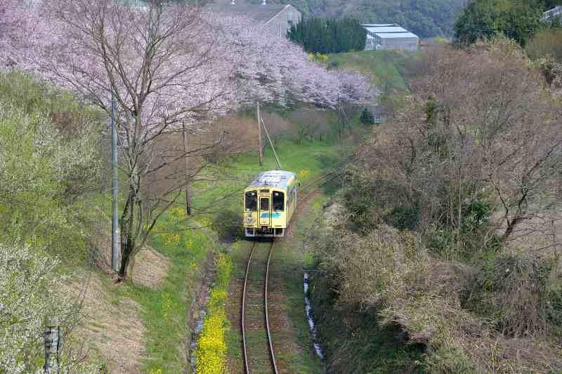 平成筑豊鉄道 (1)