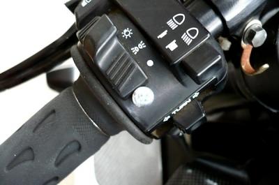 P1060648z.jpg