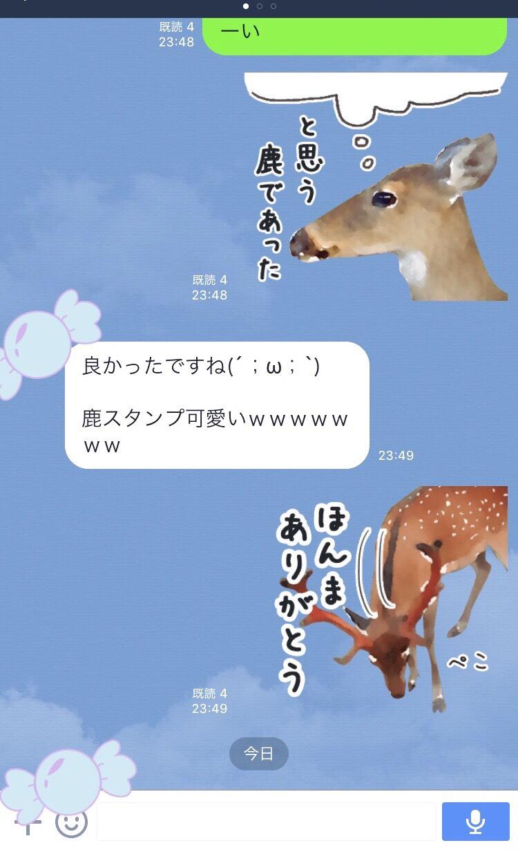 S__3252226.jpg