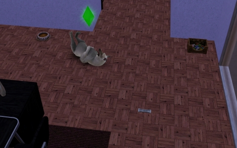 Screenshot-2093.jpg