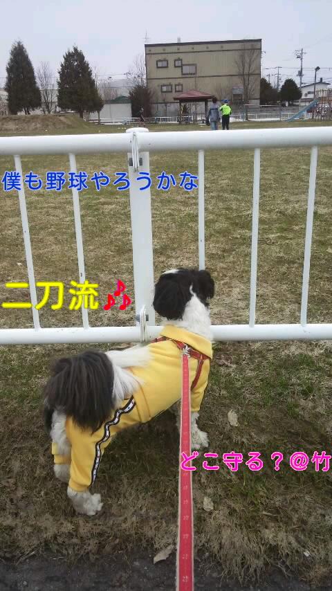 moblog_16c96eee.jpg