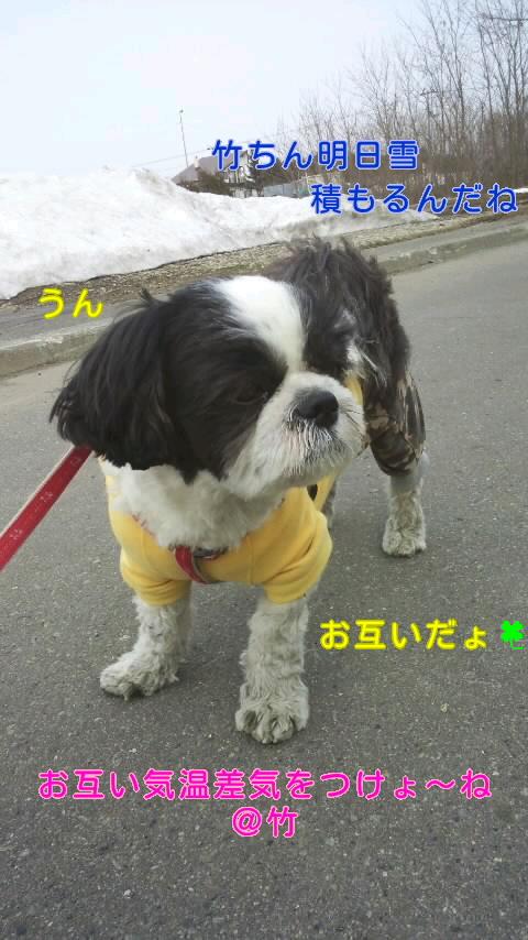 moblog_9e3f0a9f.jpg