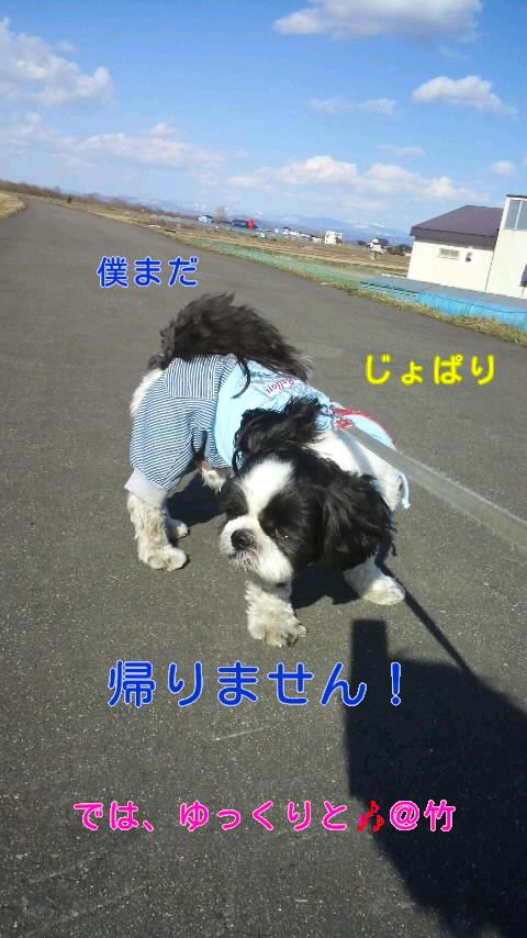 moblog_d51fd52a.jpg