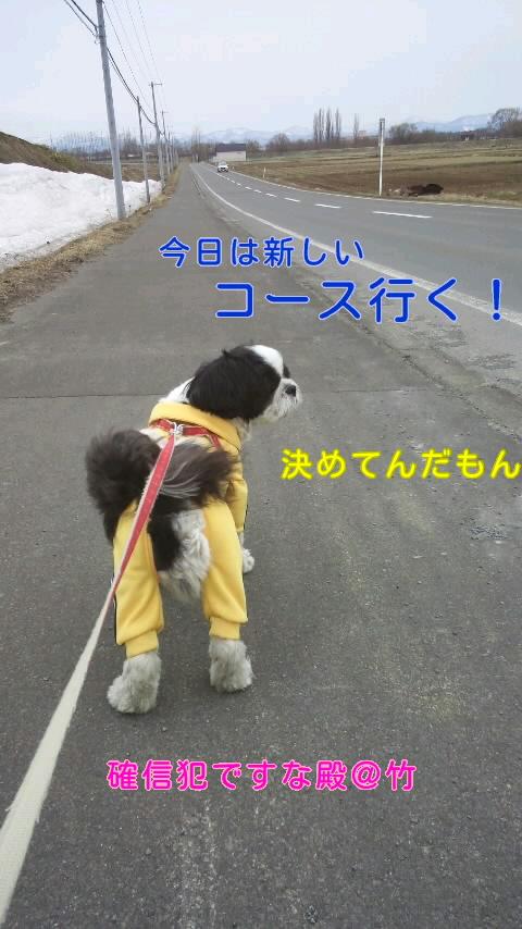 moblog_de0586b1.jpg