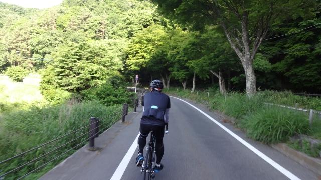 サイクリングロード?