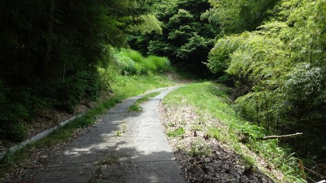 道はどんどん狭く