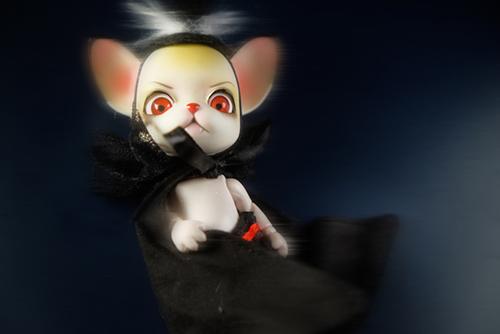 球体関節人形の動物ドール、パンジュ・ブラックルシアン、我が家のロイの吸血鬼的ショット