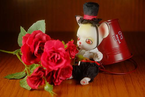 球体関節人形の動物ドール、パンジュ・ブラックルシアン、自作ブラウスの試作品を着せてみました