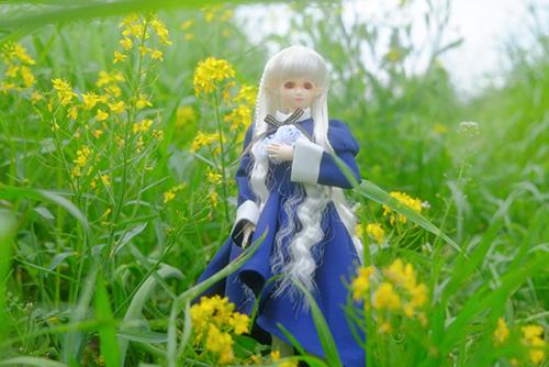 PARABOX、27cmノーマルボディ、フェアリーヘッド、メイクカスタム、エルフの女の子を連れて春の野原へ