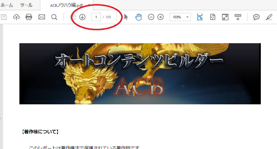 神龍ACBオートコンテンツビルダーのPDF