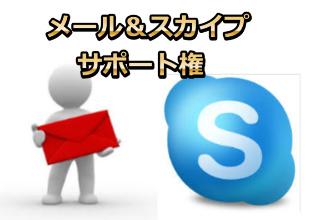 メール&スカイプサポート権