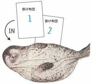 フェリシモ アザラシ1