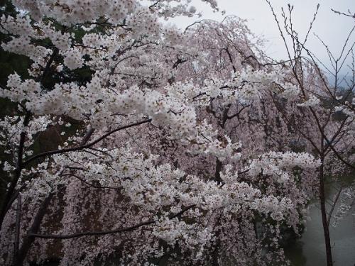 上田城11