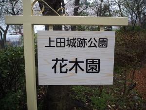 上田城16