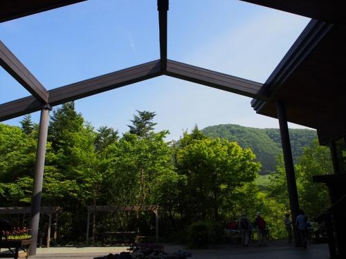 箱根湿生花園(2)