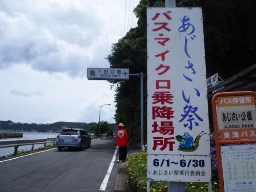 下田あじさい(2)