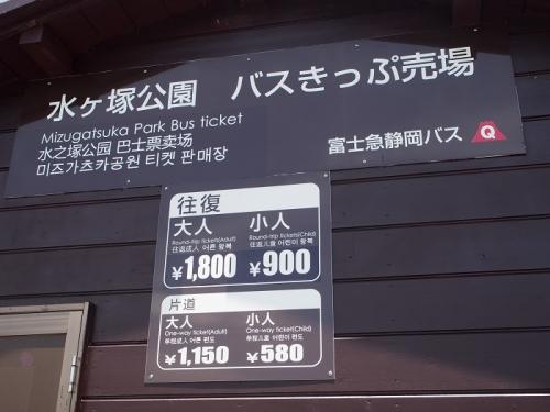 森の駅(9)