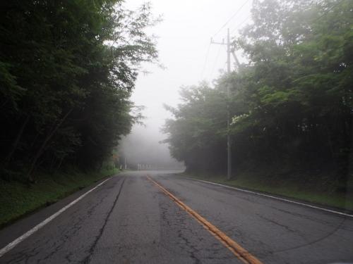 森の駅(19)