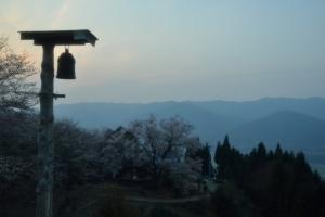 夕暮の桜風景