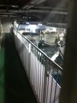160528 (87)神戸酒心館_蒸米