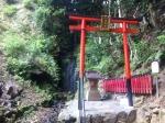 160708 (293)松尾大社_霊亀の滝