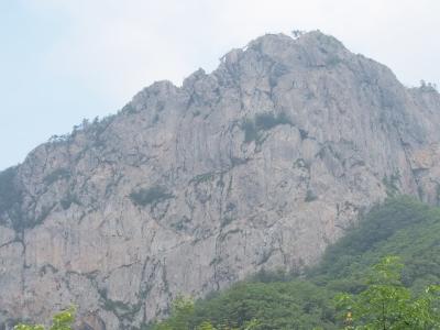 分岐から見える月岳山.