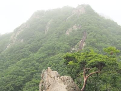 鶏龍山観音峰から三仏峰へ歩いた稜線