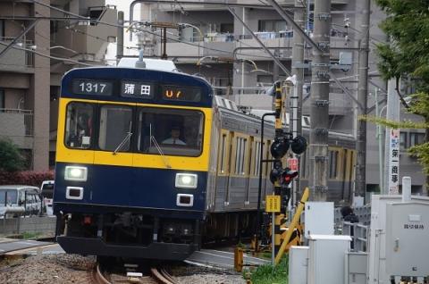 DSC_1171.jpg
