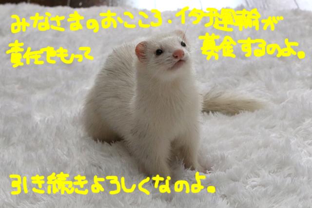 160501cc.jpg