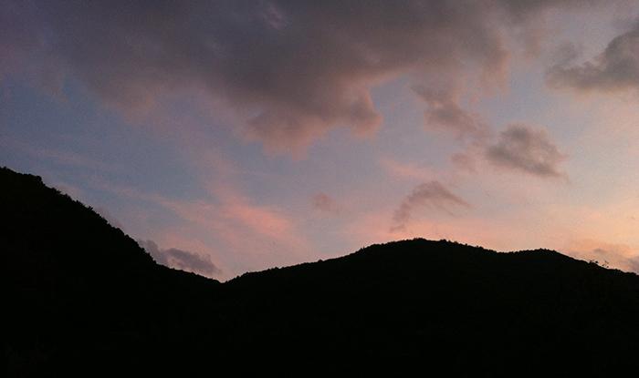 近所の山でシシノケっぽいの見た