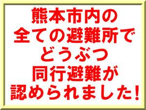 Oj5QjL0MncEK1CI1461574800_1461575009.jpg