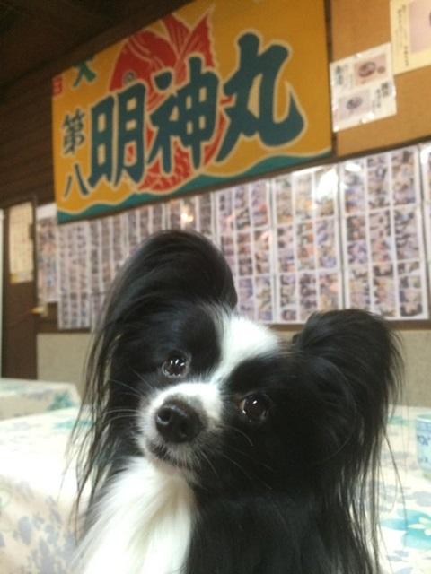 ren - コピー