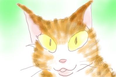 20160611猫2a1