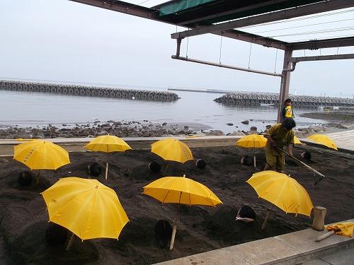 4月9日海浜4
