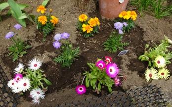 16花壇4月