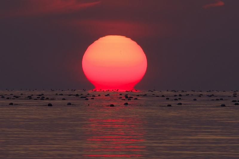 淡路島 育波漁港 だるま夕陽