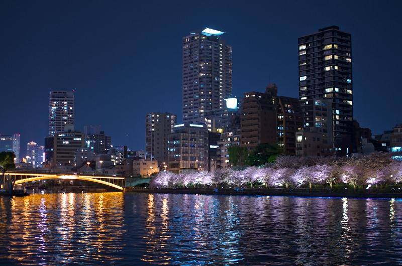 桜之宮公園の桜と夜の屋台