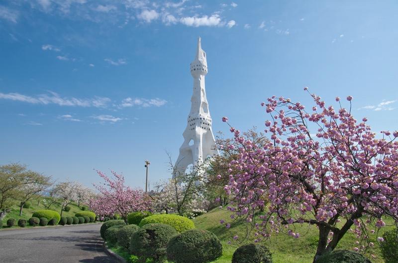 PLの塔 八重桜