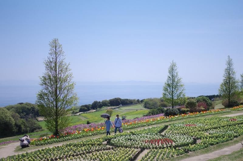 春のあわじ花さじき 歓びの庭